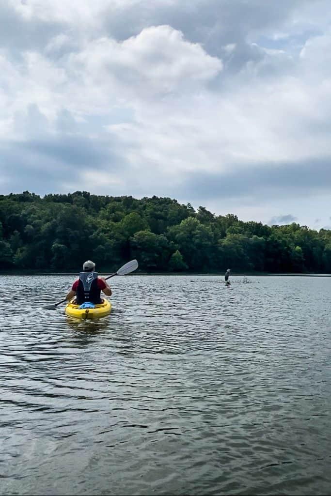 Kayaking Near a Heron