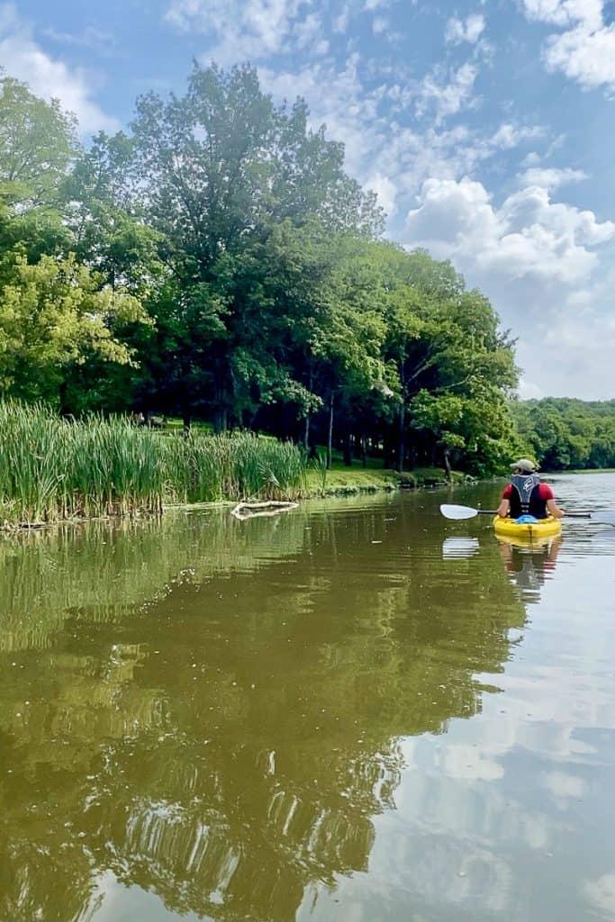 Kayaking Near Cattails