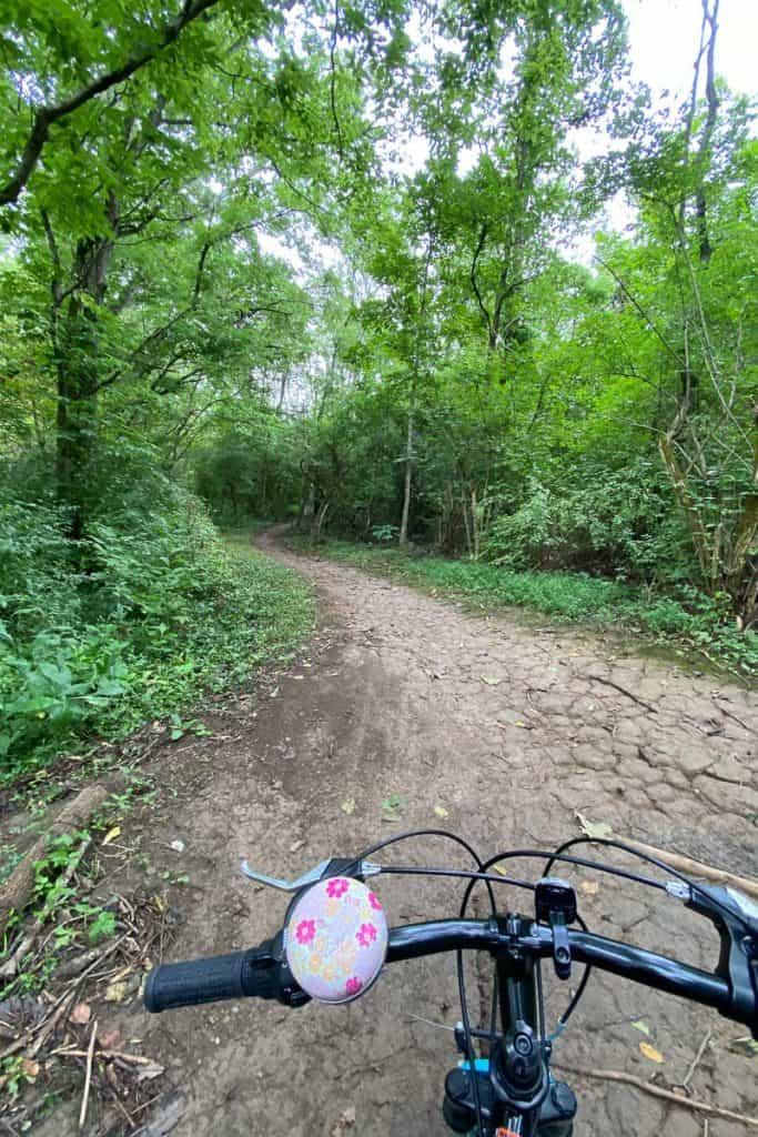 Jetstream Mountain Biking Trail at Veterans Park