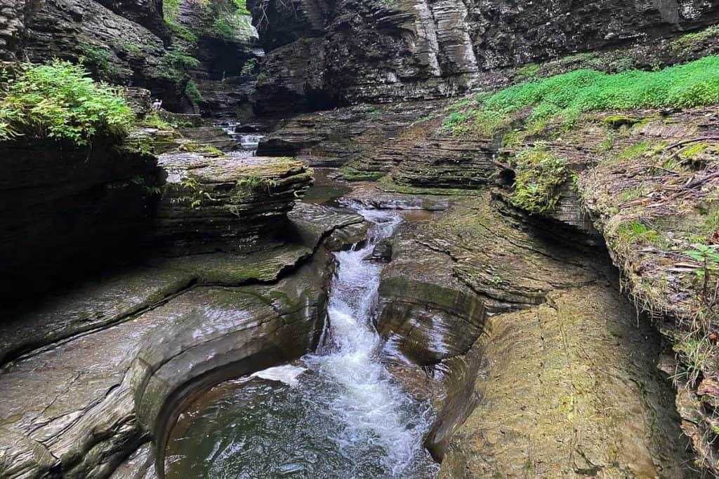 Creek water rushing over rocks