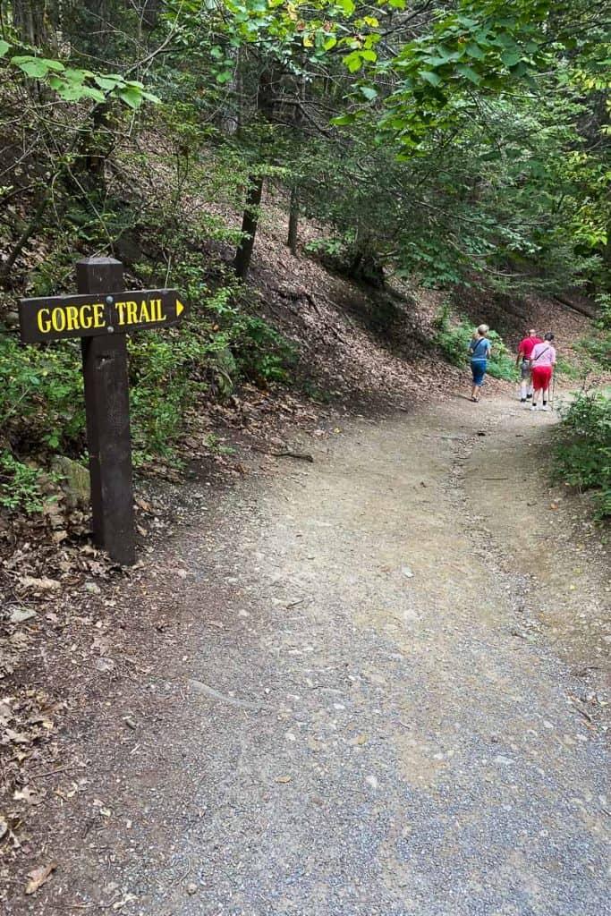 Dirt trail heading downhill at Watkins Glen