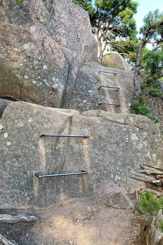 Rung + Ladder Section of a rocky trail.