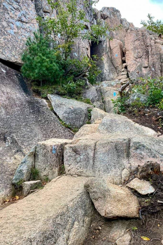 Bubbles Trail.