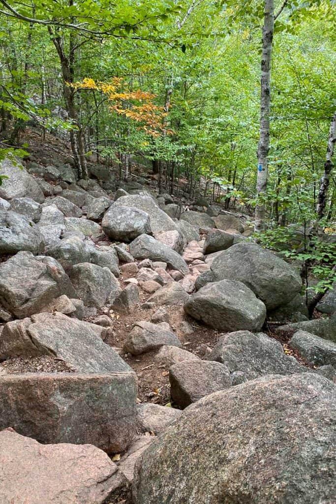 Bubbles Divide Trail.