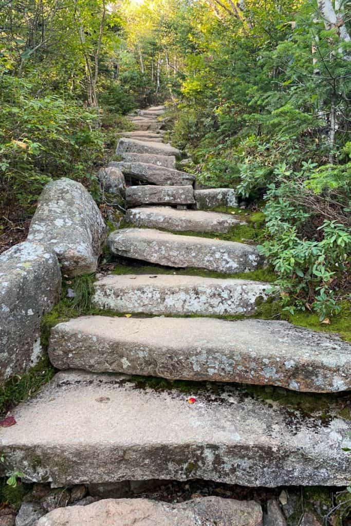 Stairs on the Cadillac North Ridge Trail.