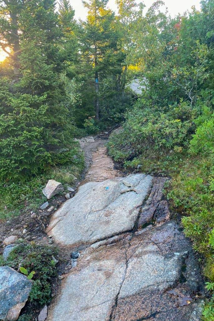 Cadillac North Ridge Trail.