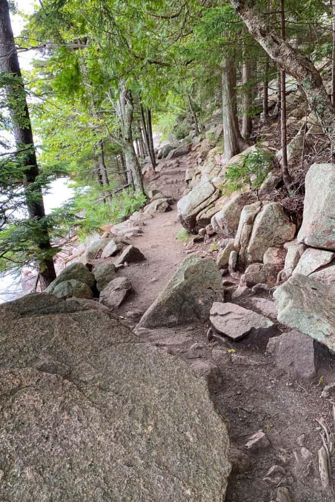 Rockier Trail on Jordan Pond Path.