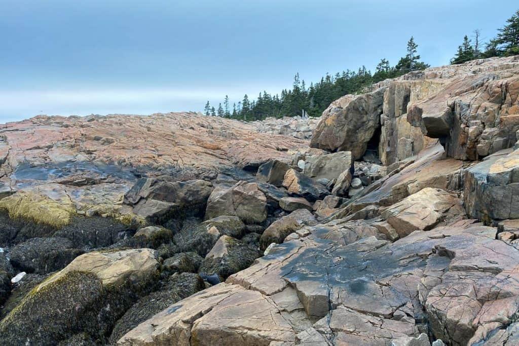 Rocks at Schoodic Point.