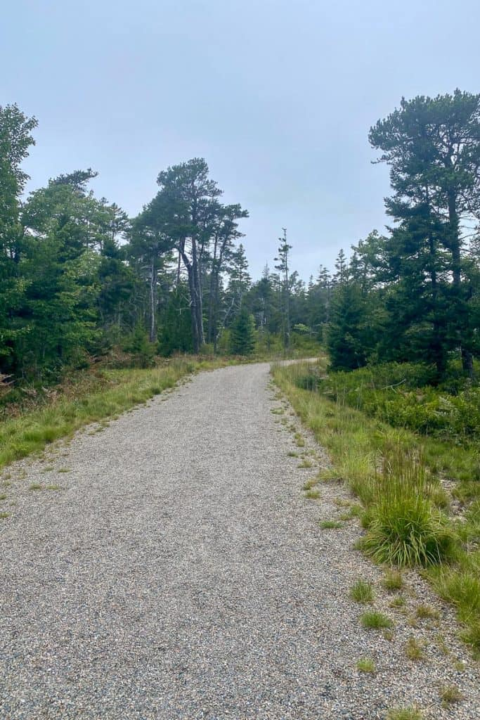 Schoodic Point Bike Paths.