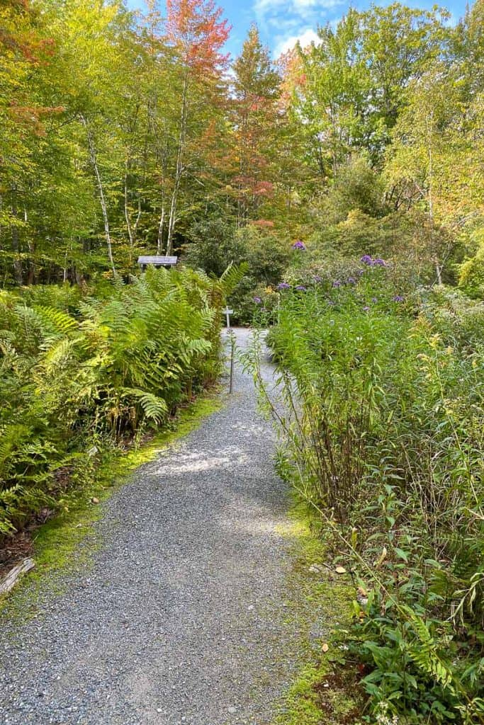 Inside the Wild Gardens of Acadia.