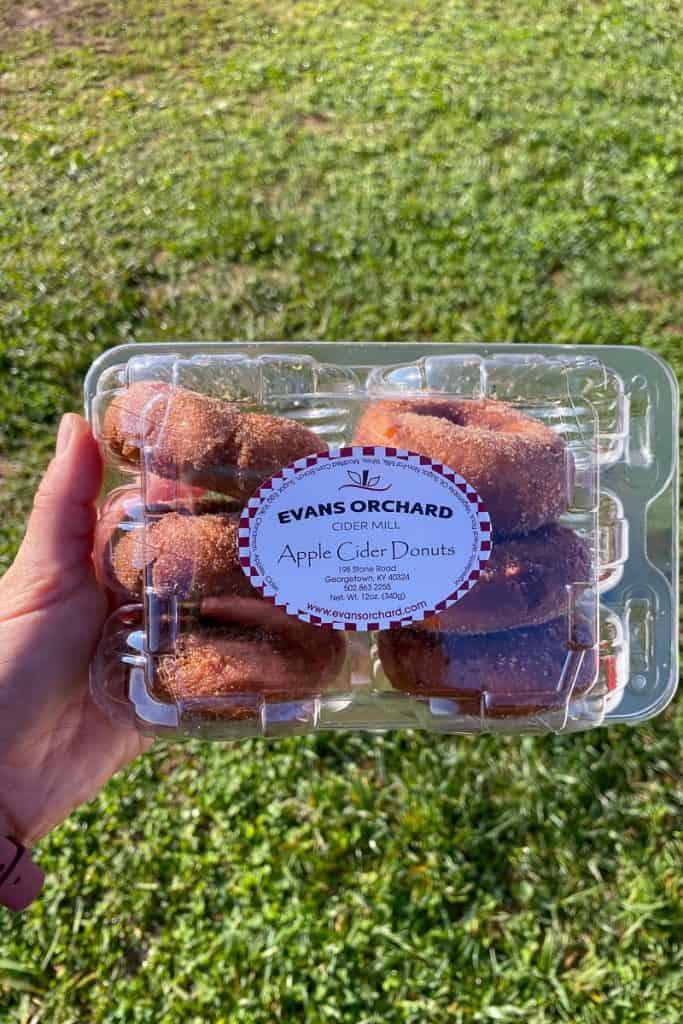 Apple Cider Donuts at Evans Orchard.